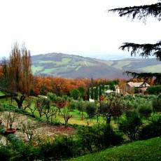 Food Fashionista Torre Olivola Todi Italy 6