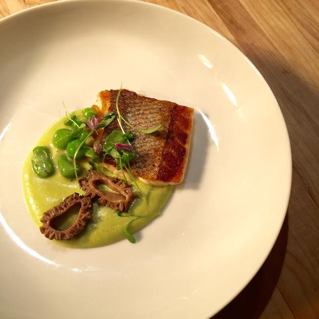 Chloe Sackett InterContinental New York Times SquareDish: Seared Pacific Branzino with fava bean puree, and ramp butter