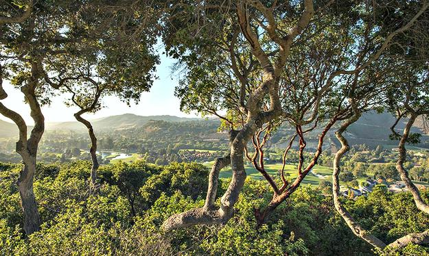 Carmel Valley Ranch Hotel
