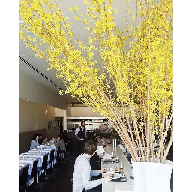Their floral arrangement is on point & perfectly frames the restaurant  #blackbirdchicago #michelinstar #springtime