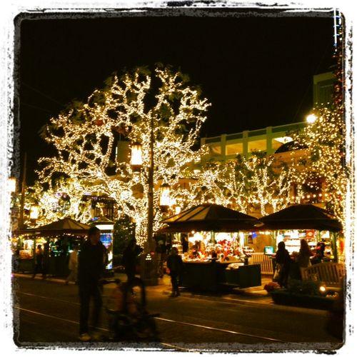 Food-Fashionista-Holiday-Lights-Grove